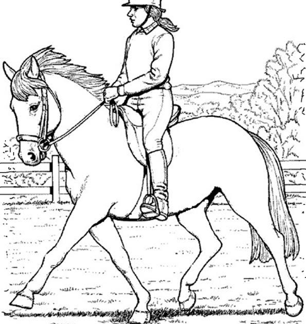 pferde malvorlagen zum ausdrucken online