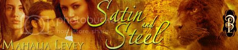 Satin and Steel Banner 2 photo Satin-and-Steel_banner.jpg