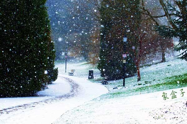 下雪  snowing
