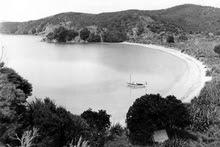 Moturua Island. Photo / APN