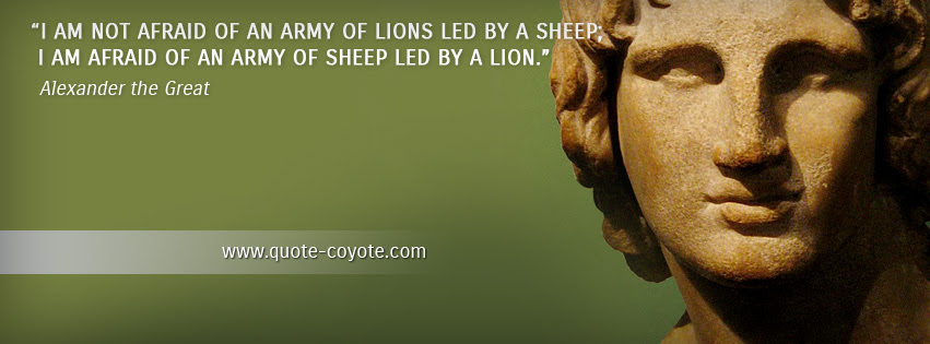 Quote Coyote Facebook Cover Images