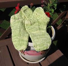 spa socks-FO