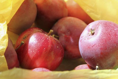 Äpfel von Barbara von Alpenschick