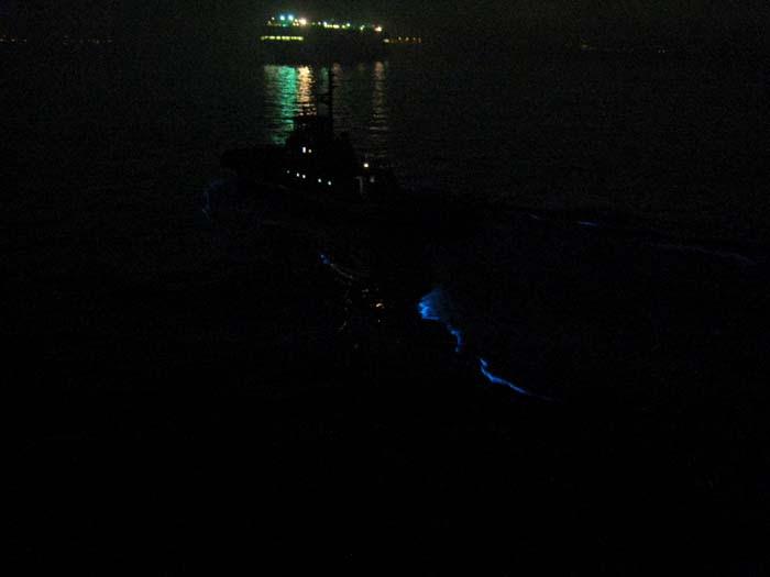 Glowing Tug Wake