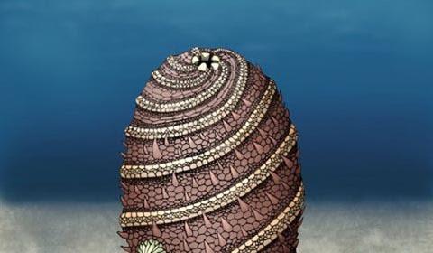 sinh vật, khám phá, kỳ lạ, 500 triệu năm tuổi
