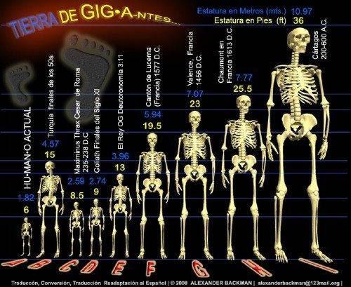 Fotos mostram claramente a evidência da existência de gigantes na Terra (2)