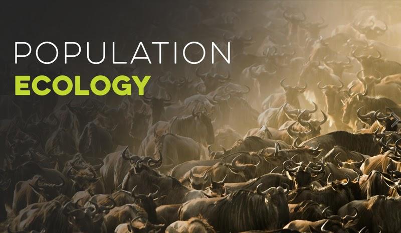 Population Ecology Worksheet Pdf - Nidecmege