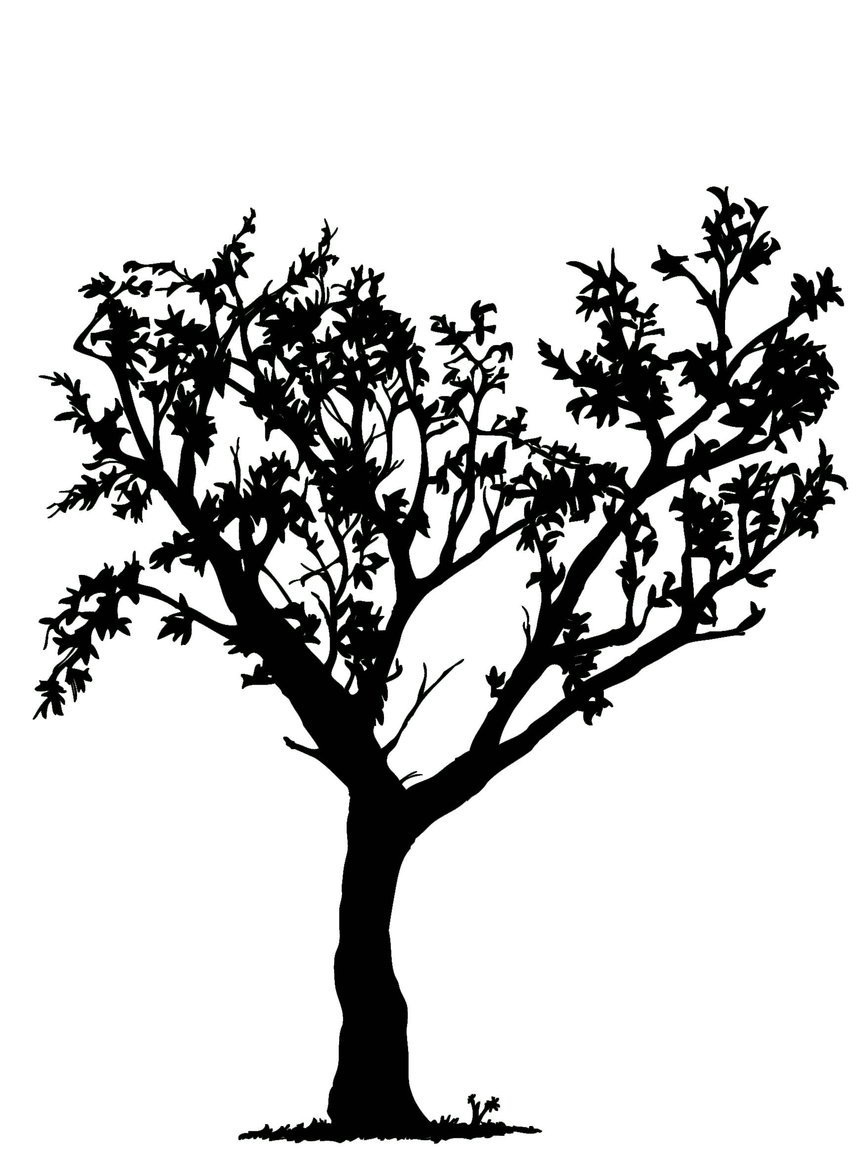 Simple Black And White Tree Design Clipart Panda Free Clipart Images