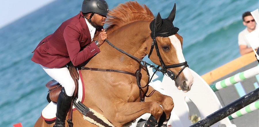 Das Teuerste Pferd