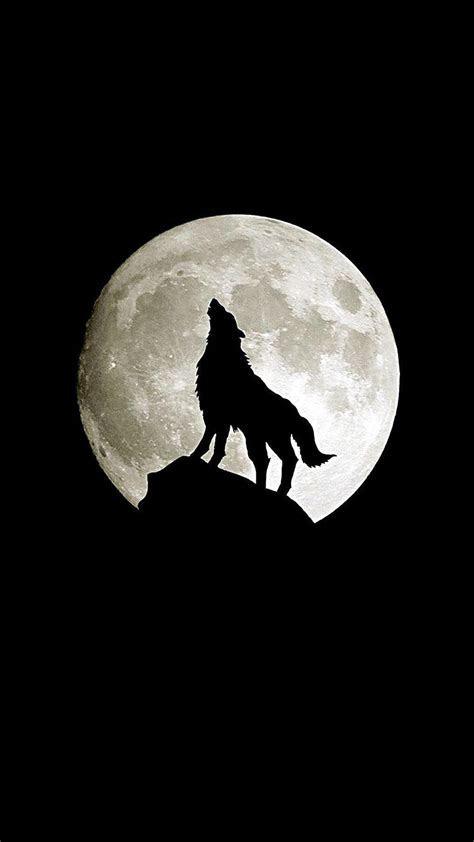 Loup en pleine lune Wallpaper for iPhone X, 8, 7, 6   Free
