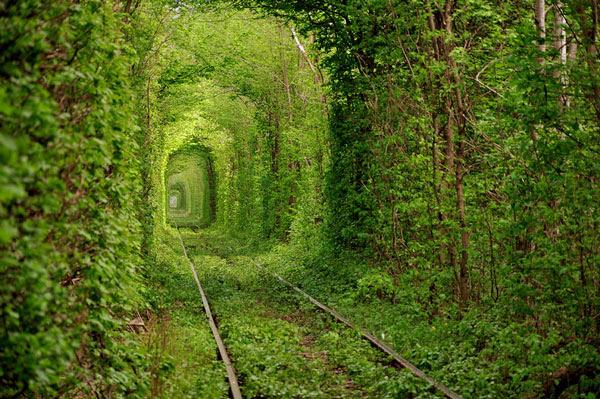 "perierga.gr - Το μαγικό ""τούνελ της αγάπης""!"