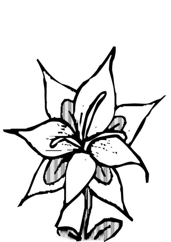Dibujos Para Colorear Flor N23 Eshellokidscom