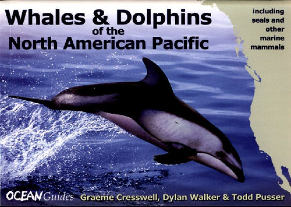 Whales And Dolphins Of The North American Pacific Including Seals And Other Marine Mammals WILDGuides