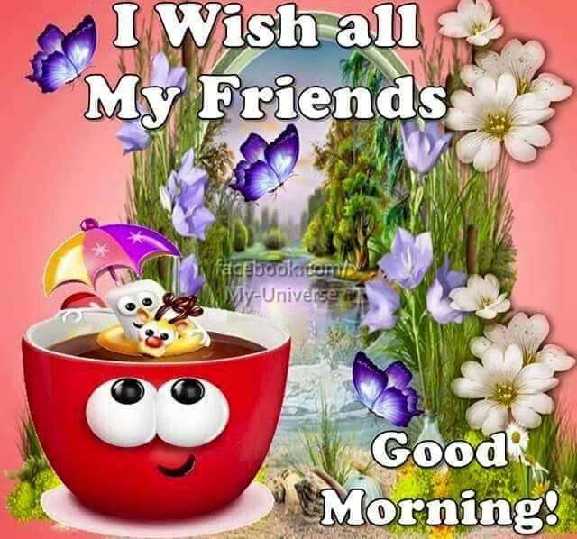 Wish All My Friends Good Morning Pictures Photos And Images For
