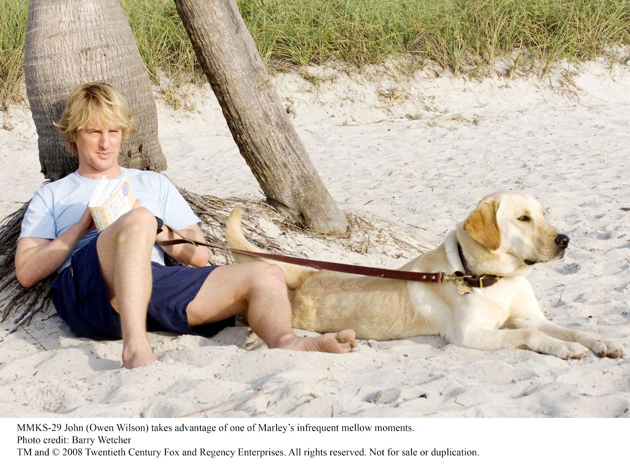 Marley And Me Movie Quotes