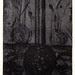 Between earth and sky05,(5-50),複合媒材,16×22cm,1999