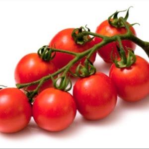 Reprodução/Austral Seedlings