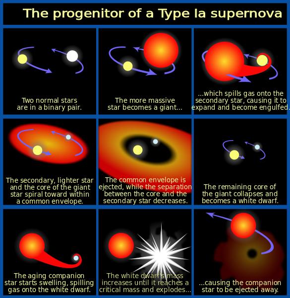 File:Progenitor IA supernova.svg