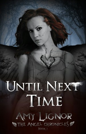 Until Next Time: The Angel Chronicles, Book 1