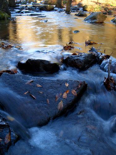 Collins Creek part 2