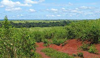 Fil:East - Guinean Savanna 001.jpg