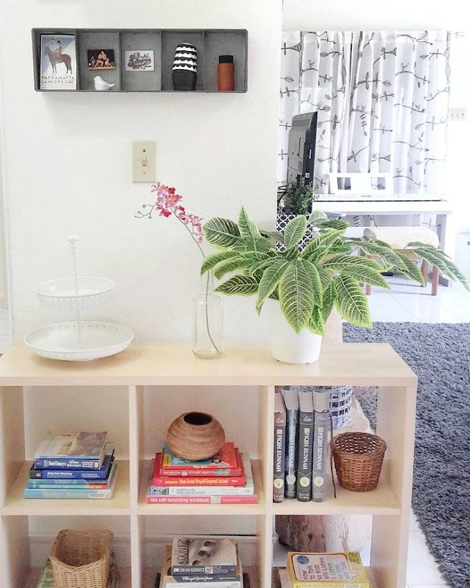 Rak Display Di Ruang Tamu   Ide Rumah Minimalis