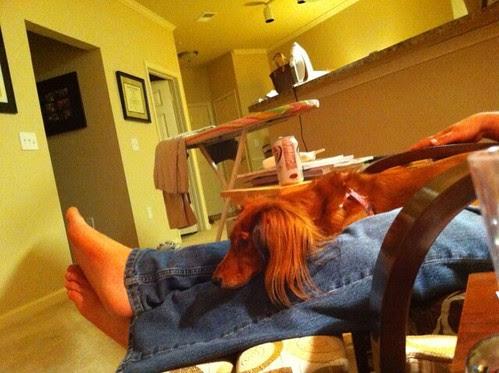 Lulu relaxes