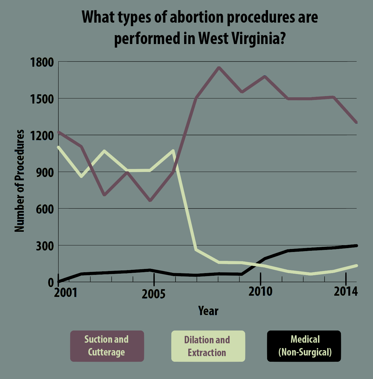 What type of abortion procedures are performed in West Virginia?