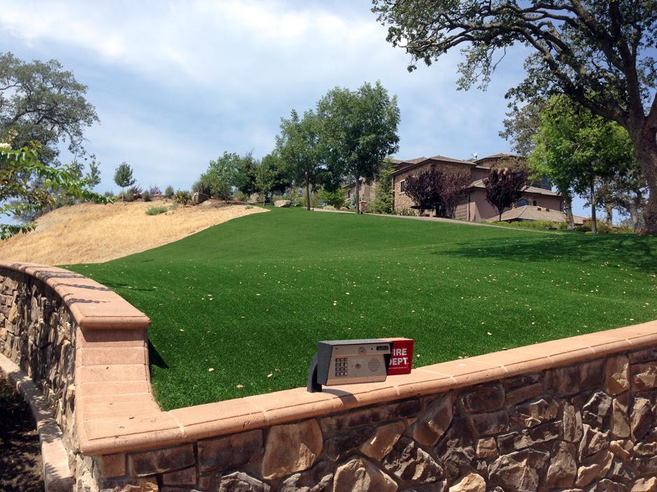 Installing Artificial Grass Bonduel Wisconsin Design Ideas Landscaping Ideas For Front Yard