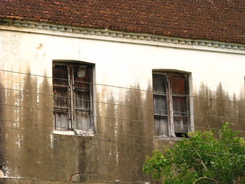 Moçoilas não mais estão nas janelas