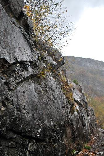 Rocks in the cut