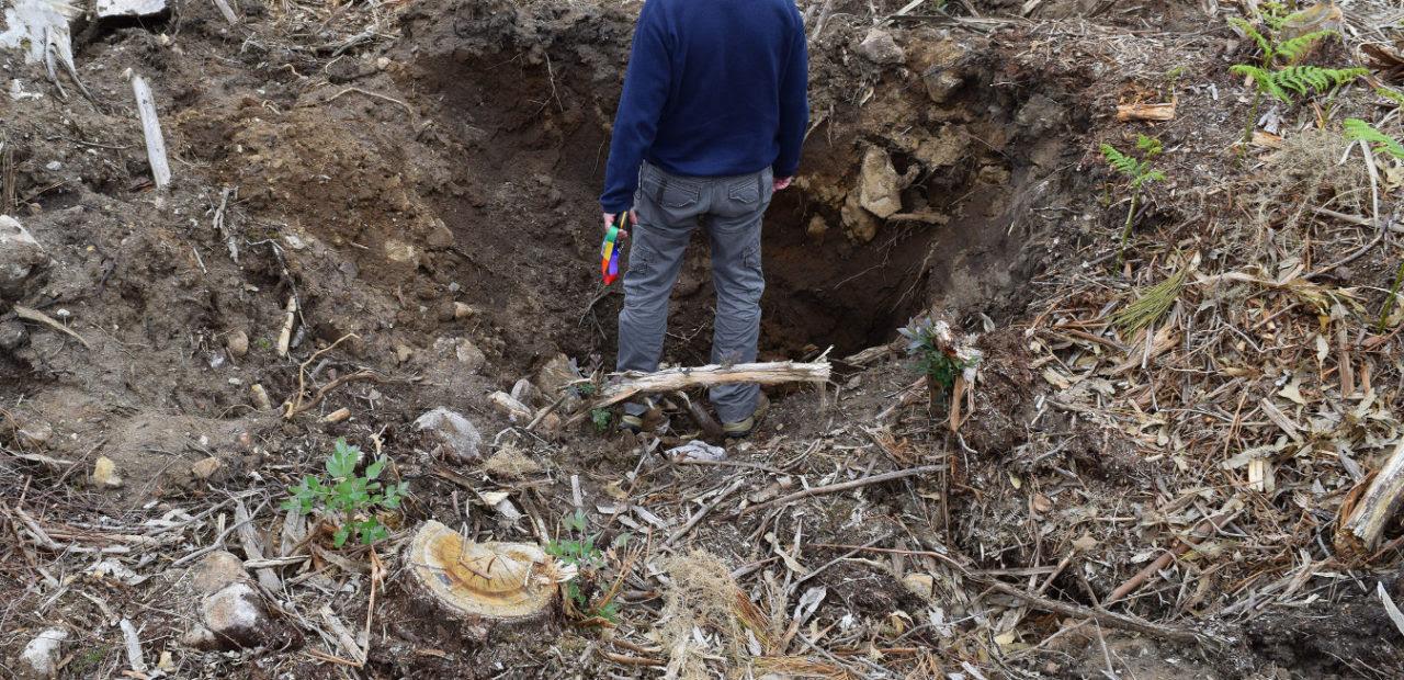 Resultado de imaxes para Esnaquizan un dolmen e levan dúas das súas laxes para adornar un xardín