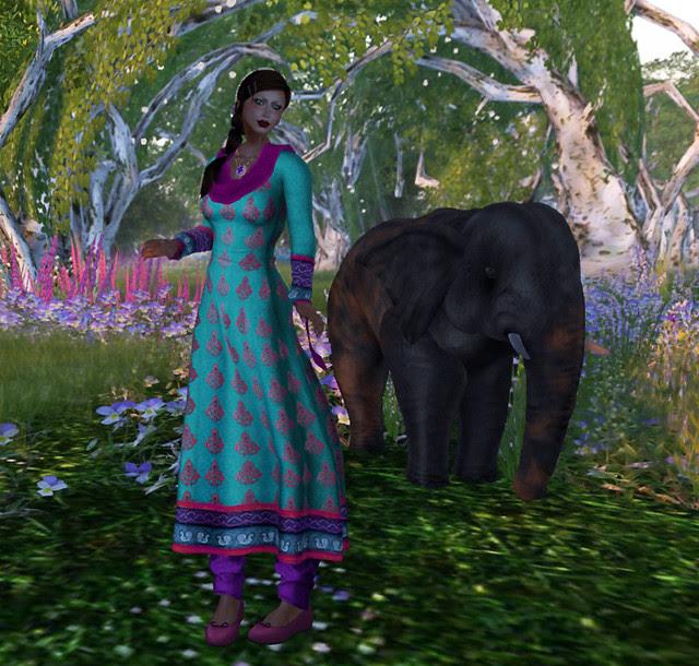 Riding the elefant 4