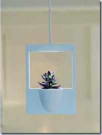 Polaroid Vase