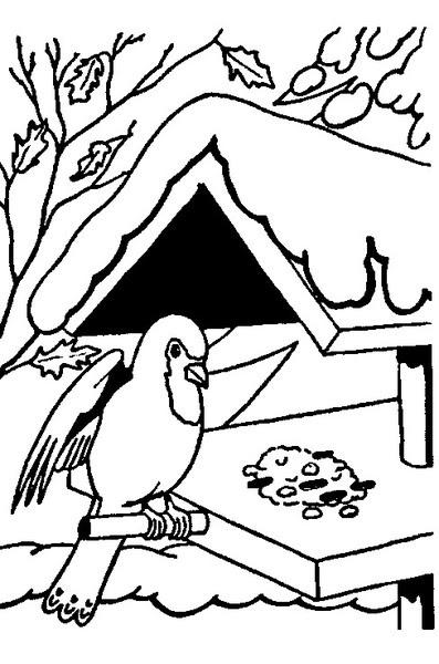 Kolorowanki Karmnik Dla Ptaków Malowanki