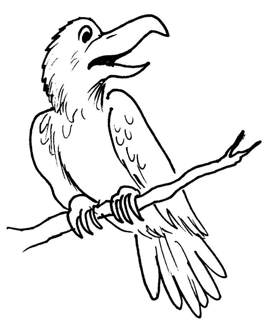 Dessin coloriage animal corbeau perche