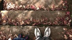 step(s)