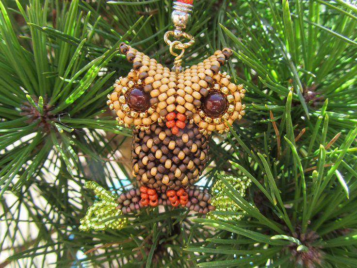 Little Owl | Flickr - Photo Sharing!