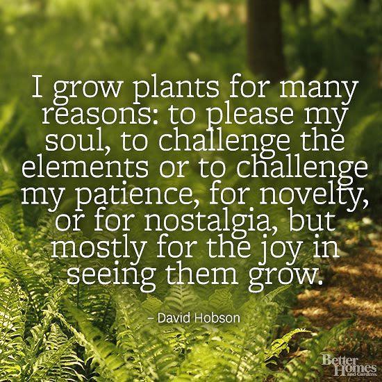 Quotes Life Quote The Garden. QuotesGram