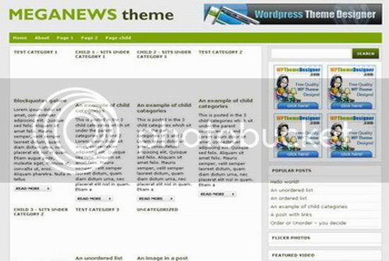 Wordpress Meganews Green Gray Theme Template