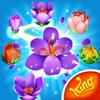 King.com Limited - Blossom Blast Saga artwork