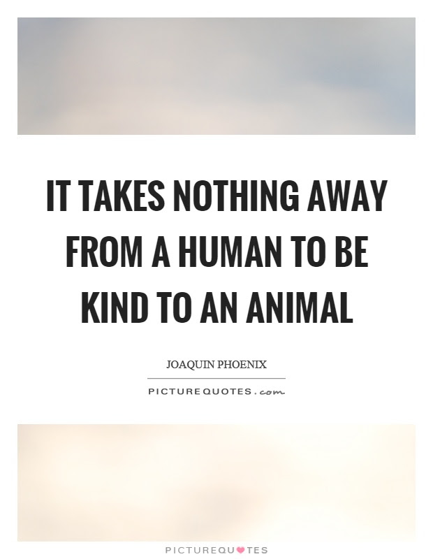 It Takes Nothing Away From A Human To Be Kind To An Animal Picture