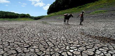Seca castiga Estados do Nordeste / Foto: Marcos Michael/JC Imagem