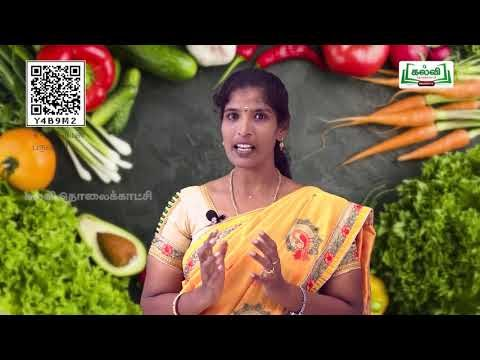 4th Science உணவு  Food பருவம் 2 அலகு 1 பகுதி 1 TM Kalvi TV