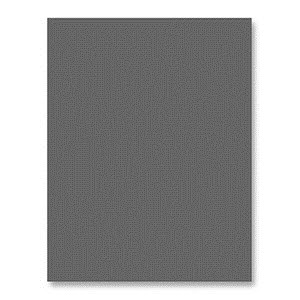 Simon Says Stamp Card Stock 100# SLATE Gray ST26