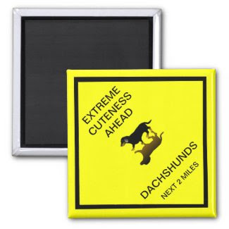 Extreme Cuteness Ahead - dachshund road sign Magnets