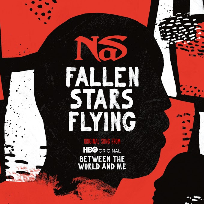 Nas - Fallen Stars Flying (Clean / Explicit) - Single [iTunes Plus AAC M4A]