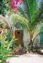 Pictures of Tropical Gardens Bed & Breakfast, West Palm Beach ...