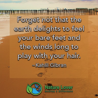 Bare Feet And Wind