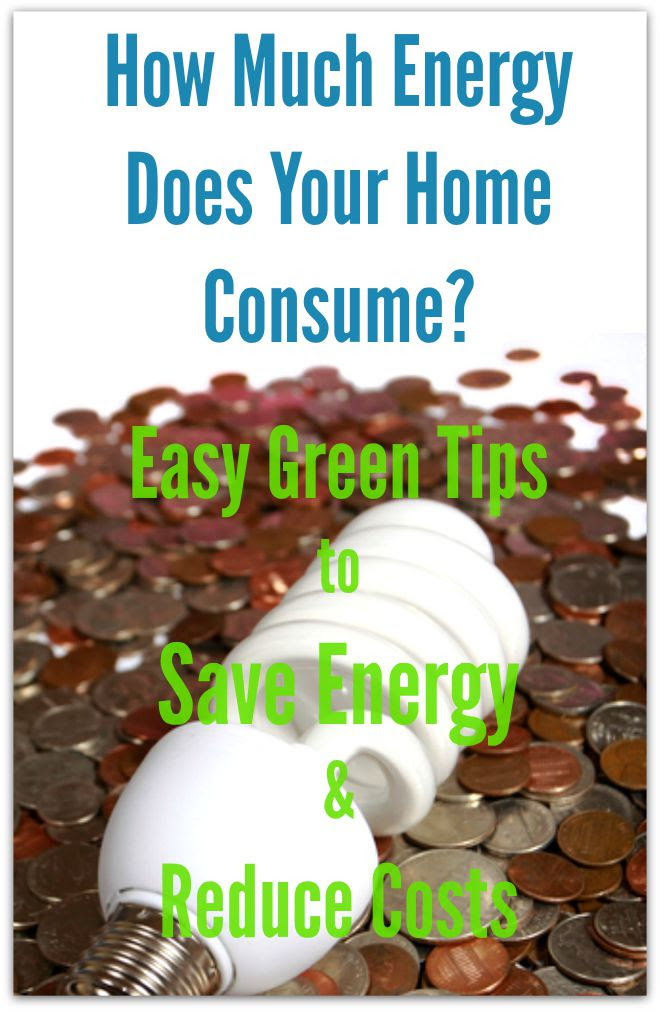 How Much Energy Does Your Home Consume? Easy Green Tips to Save Energy and Reduce Costs